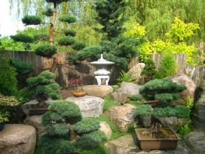 Ogród i Działka (3)